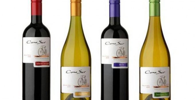 Featured Product: Cono Sur Organic Wines